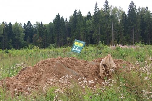 Леса Красногорска заваливают строительным, промышленным и бытовым мусором!