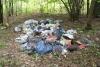 Очистим «Баньку», но «загадим» лес! ..это нормально?